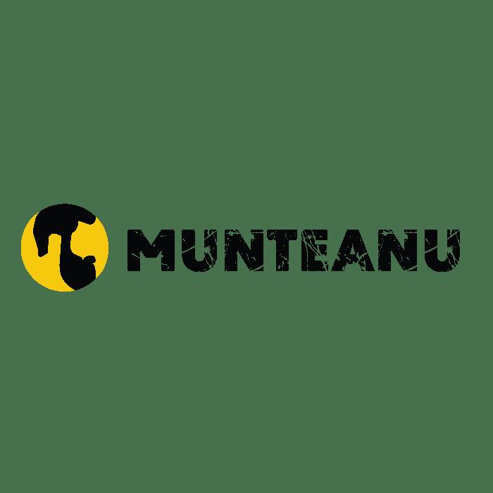 Munteanu este partener Impro